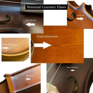 bunnel basic clearance violin flaws details