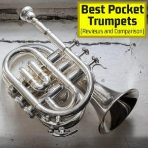 Best Pocket Trumpet: Reviews and Comparison