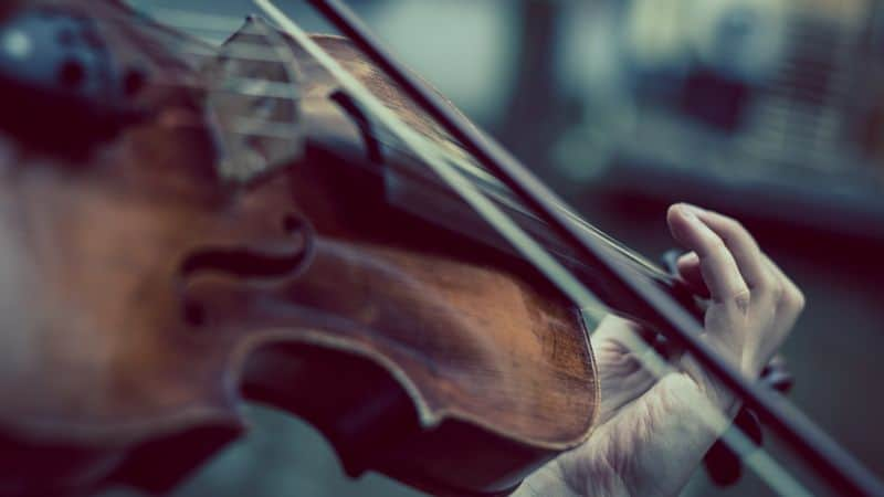 Person playing the viola