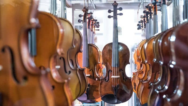 Differently sized stringed instruments like viola and violin