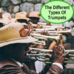 The Different Types Of Trumpets Explained