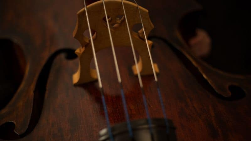 Closeup of viola strings
