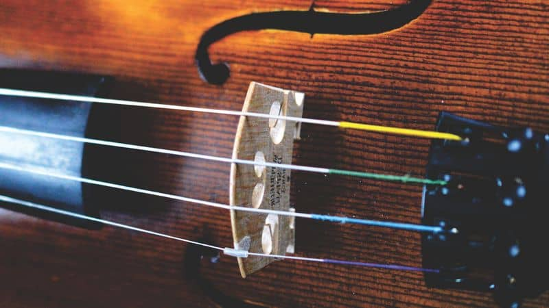 Closeup of violin strings