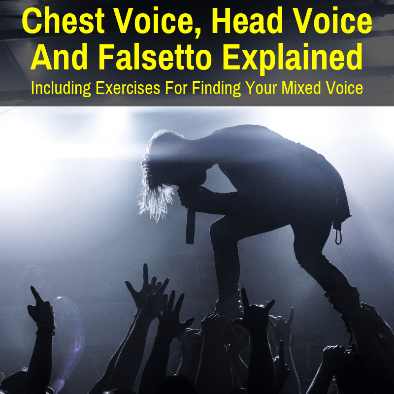 Chest Voice Head Voice And Falsetto Explained With Exercises Musicaroo