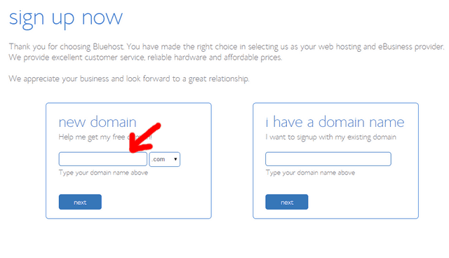 bluehost signup domain selection