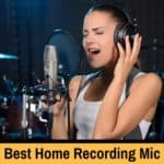 The best mics for singing at home