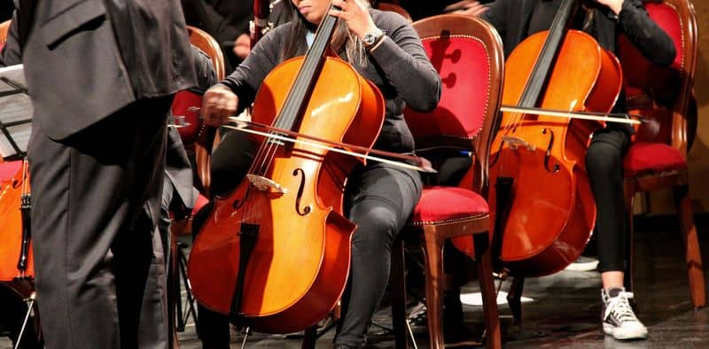 Cellos playing in an orchestra
