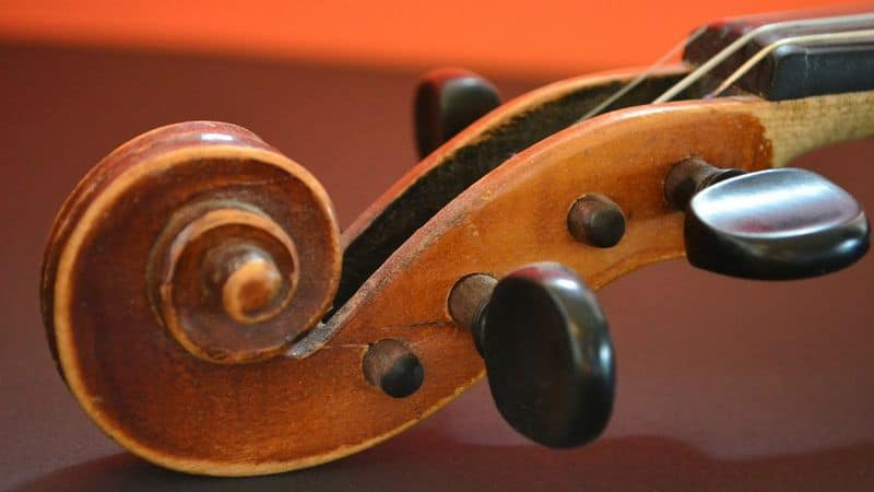 Tuning pegs on a violin