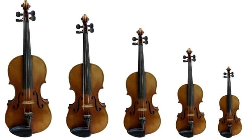 different sizes of violins