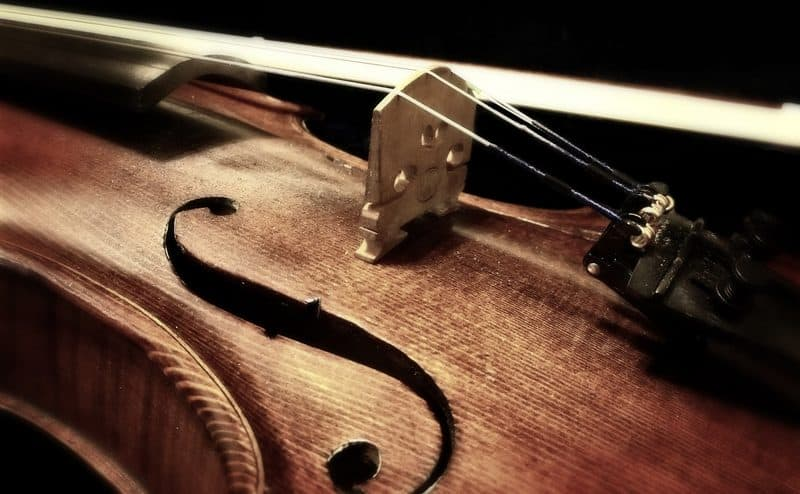 Strings on a violin