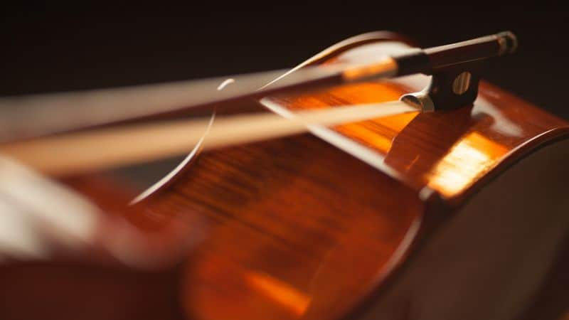 Closeup of violin bow strings