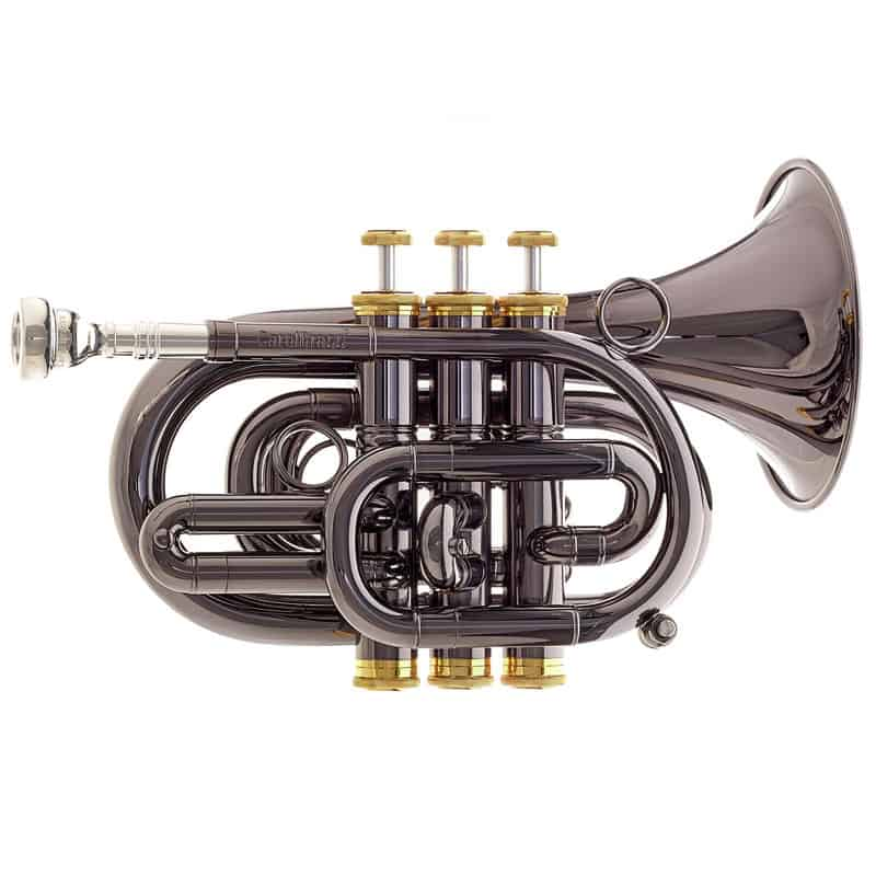 Carol Brass CPT-3000 pocket trumpet review