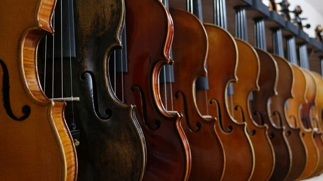 Different brands of violins
