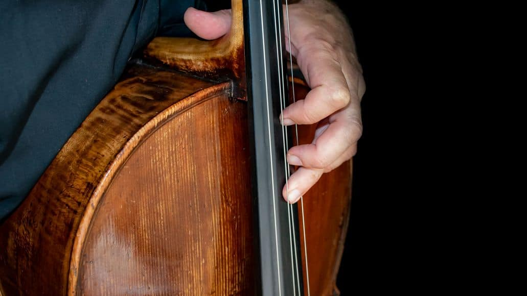 Fingers on cello strings