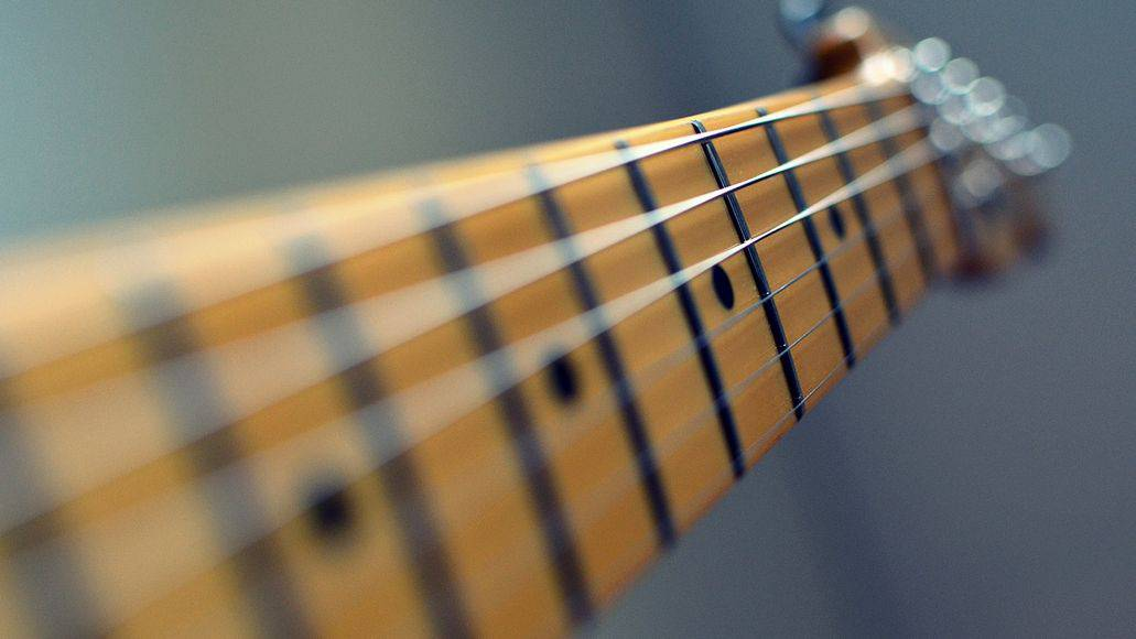Guitar neck with fretboard