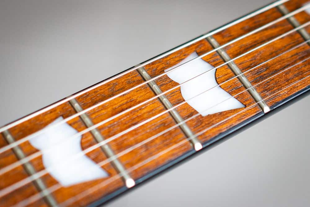 Inlays or fret markers
