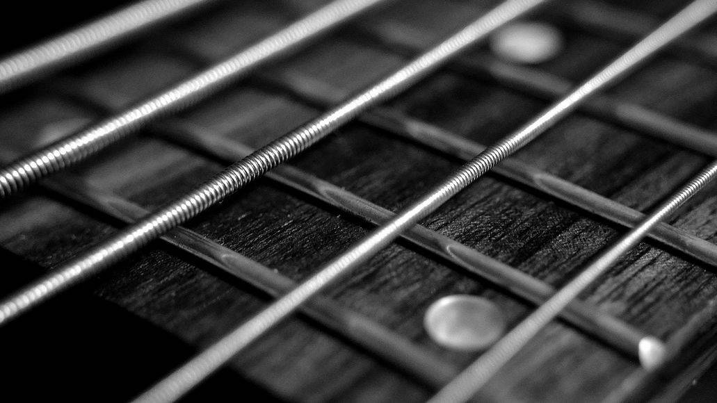 frets on a bass guitar
