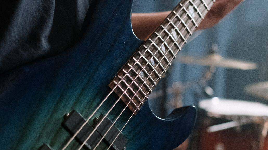 frets on a bass